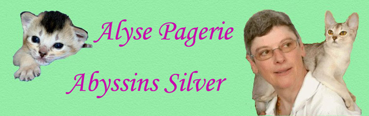 logo alyse pagerie